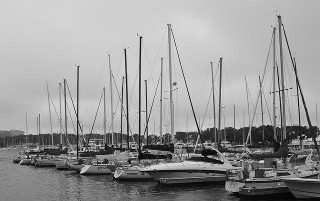Belmont Harbor b and w