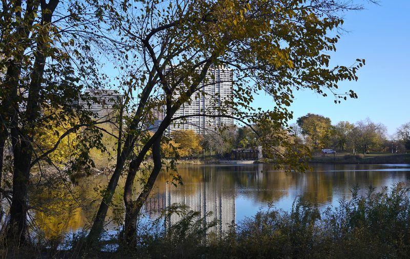 North Pond Oct 29