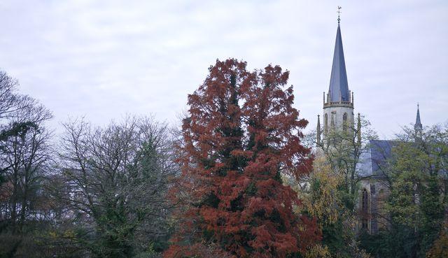 Gutersloh Nov 20-1