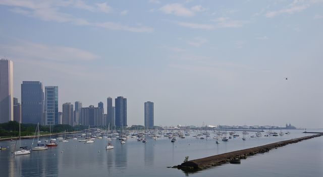From Shedd May 30