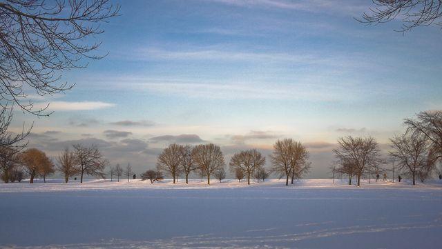 Lincoln Park snow-1