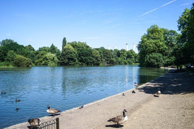 Battersea Park July 29-2