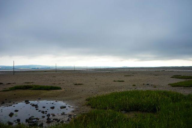 Lindisfarne July 23-4