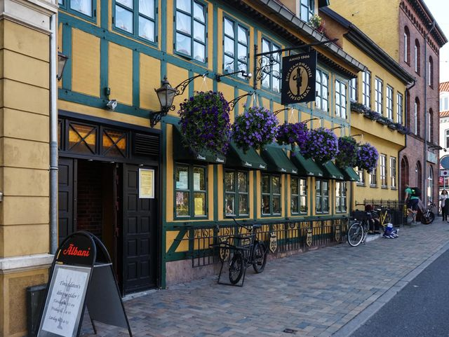 Odense evening walk-4