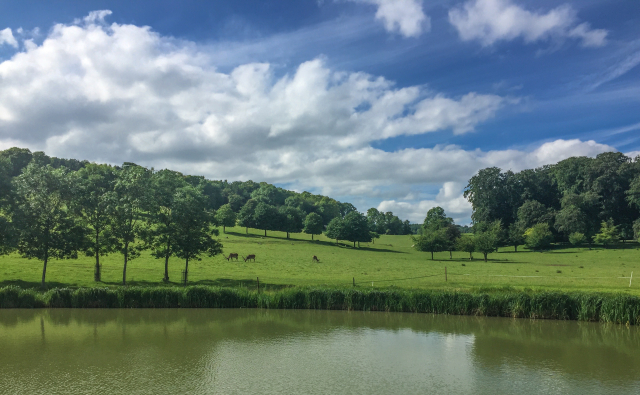 Wormsley-2